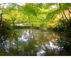 京都の神社仏閣名所巡り