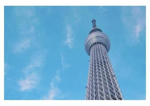 【各日3組限定】東京スカイツリーの下をあるく